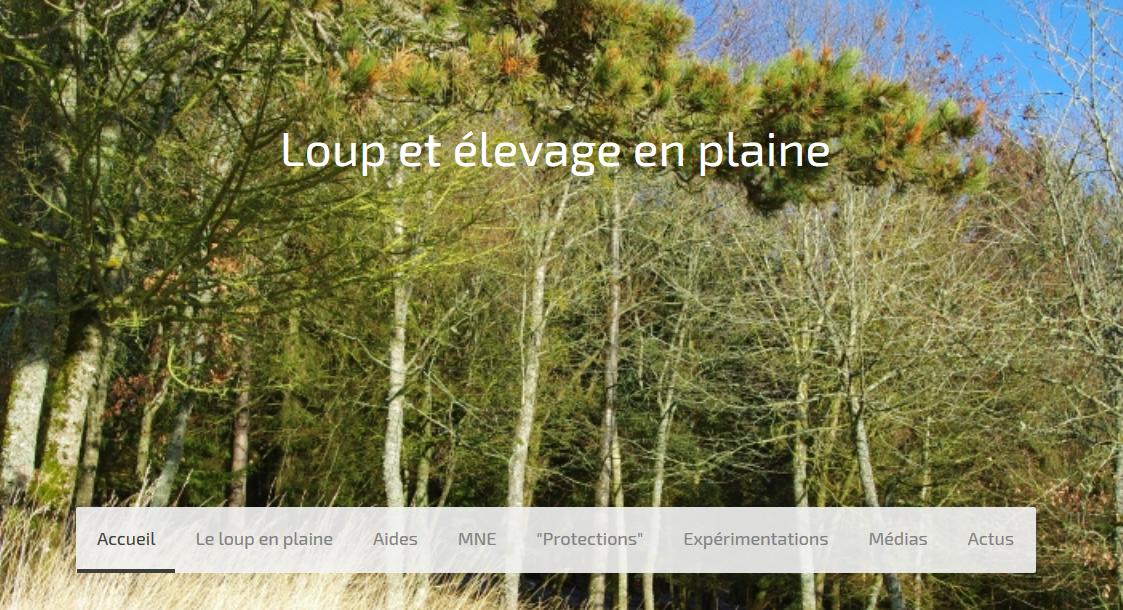 Un site internet dédié à la problématique loup-élevage en plaines