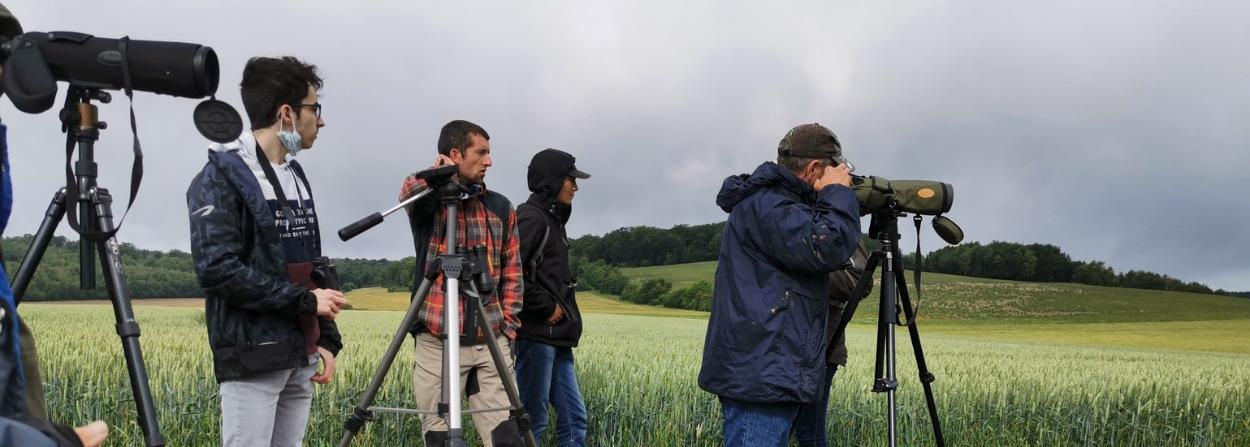 Un article de la Fondation Nature & Découvertes sur notre projet sur l'évolution des effectifs de rapaces des plaines.