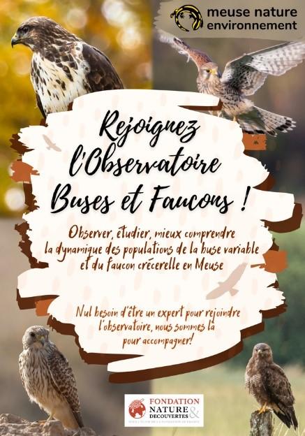 Appel à bénévoles - Observatoire Buses et Faucons